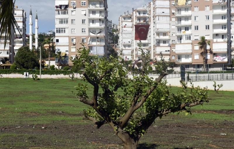 Antalya Haberleri