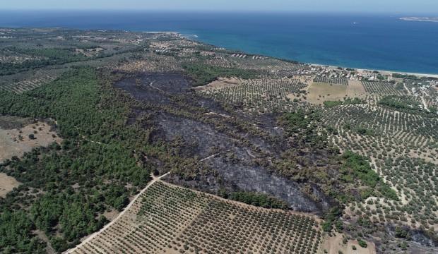 Çanakkale'de 52 yangında 222 hektar alan kül oldu