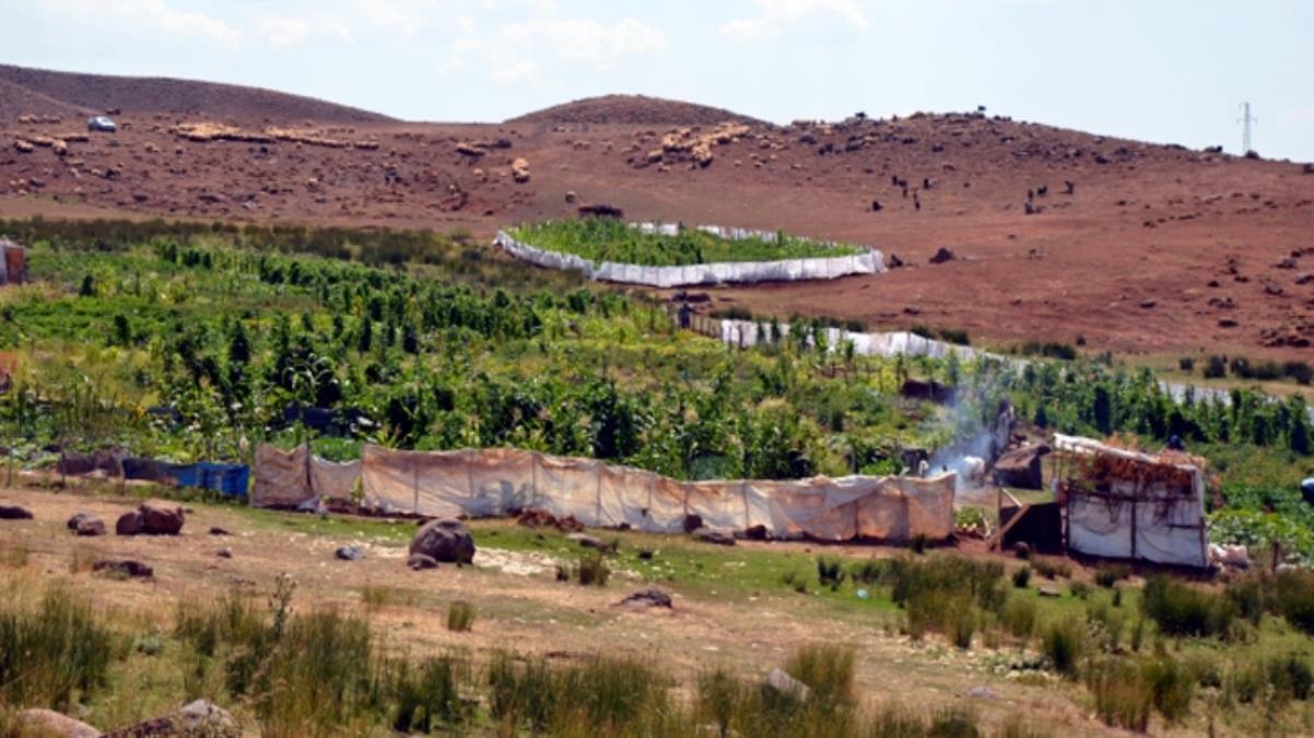 Diyarbakır'ın Şenyayla bölgesi Cumhurbaşkanı Erdoğan'ın kararıyla Muş'a bağlandı