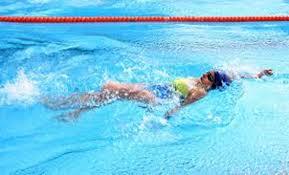 Havuz Kirlenmesine Neden Olan İç Etkenler Anchor?