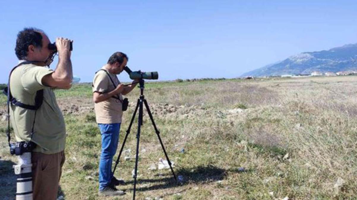 Herkes fotoğrafını çekmek için koştu! Türkiye'de ilk defa görülen kuş türü heyecan yarattı