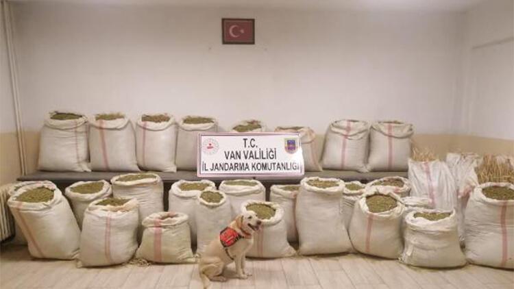 Van'da bir evde 732 kilo uyuşturucu ele geçirildi