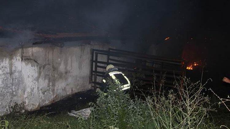 Manisa\'da çiftlik yangını: Ahırlar kullanılamaz hale geldi