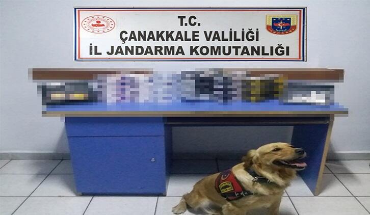 Narkotik köpeği \'Roket\' ile yapılan kaçak tütün operasyonunda, 1 gözaltı