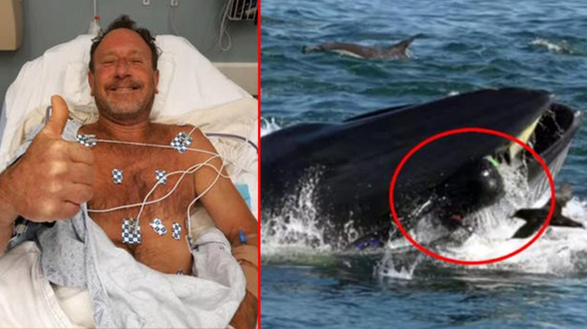 Balinanın yutup tükürdüğü ABD'li balıkçı, 3 kişinin öldüğü uçak kazasından da sağ kurtulmuş