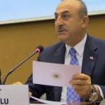 Dışişleri Bakanı Çavuşoğlu, AP üyesine dersini verdi