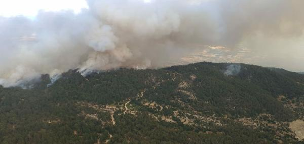 Gökbel Dağı'ndaki yangına boru tamir etmek isteyen baba - oğul neden olmuş