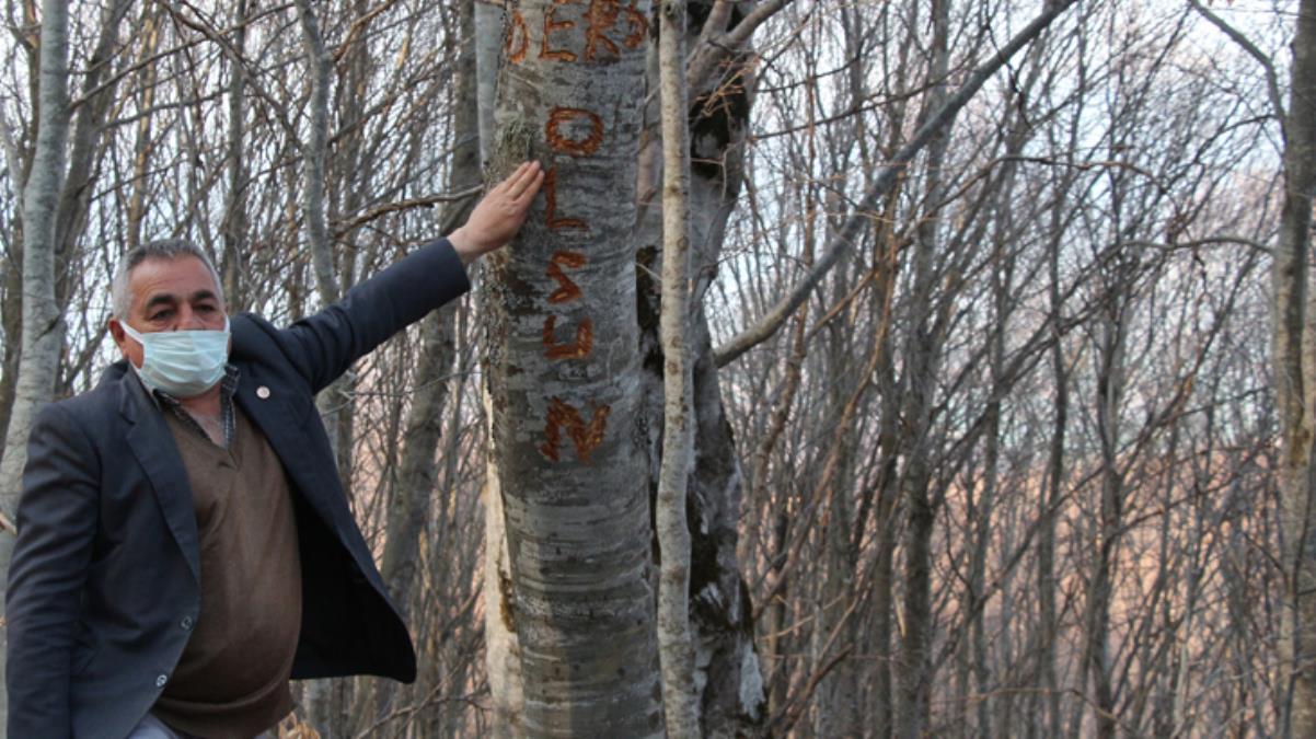 Köyde esrarengiz olay! Su borularını kırıp ağaca 'Ders olsun' yazdılar