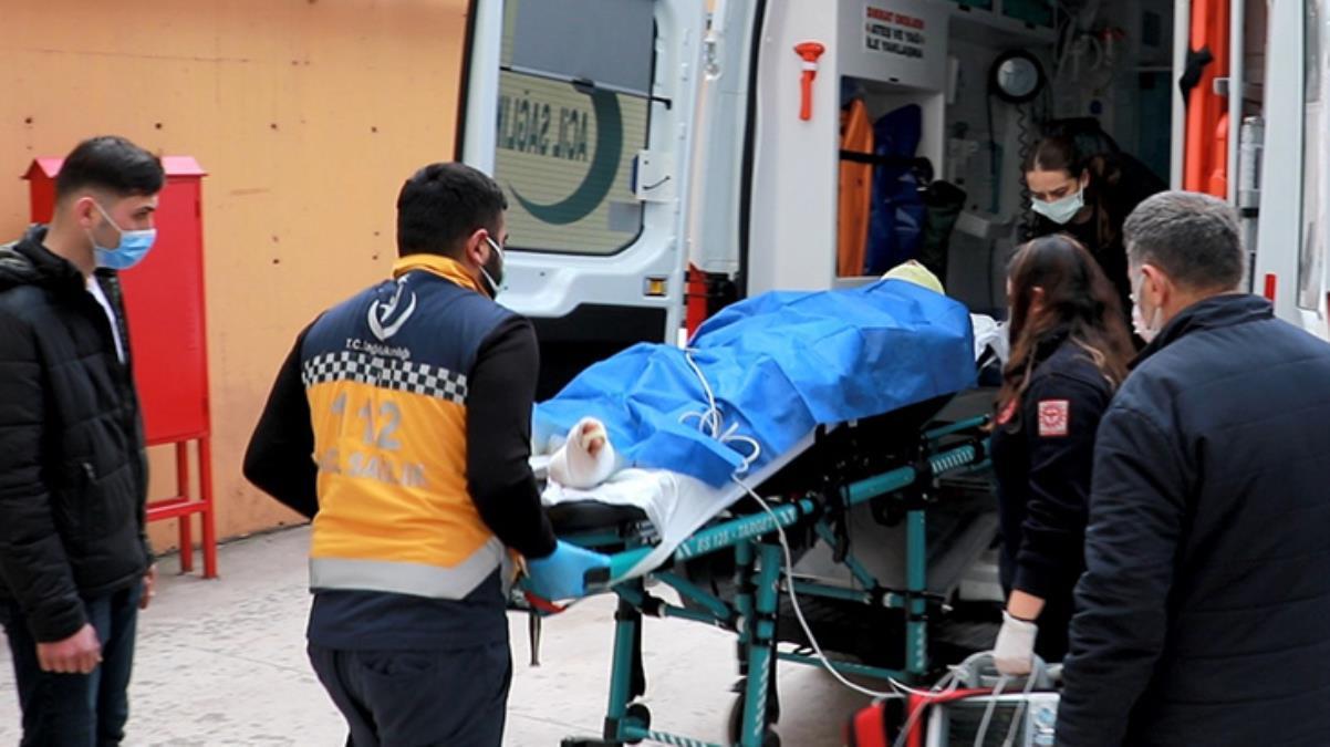 Kozalak toplarken yüksek gerilim hattına değen adamın tüm vücudu yandı
