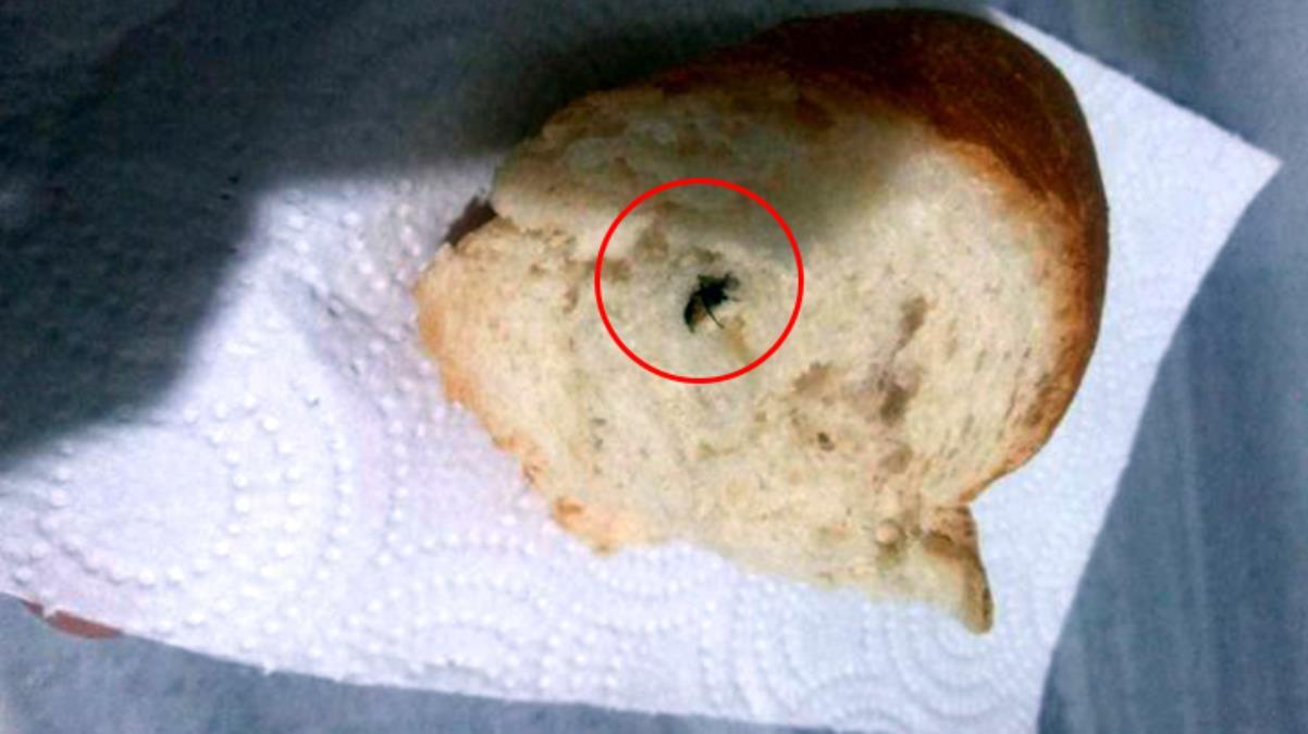 Mide bulandıran olay Marketten aldığı ekmeğin içinden sinek çıktı