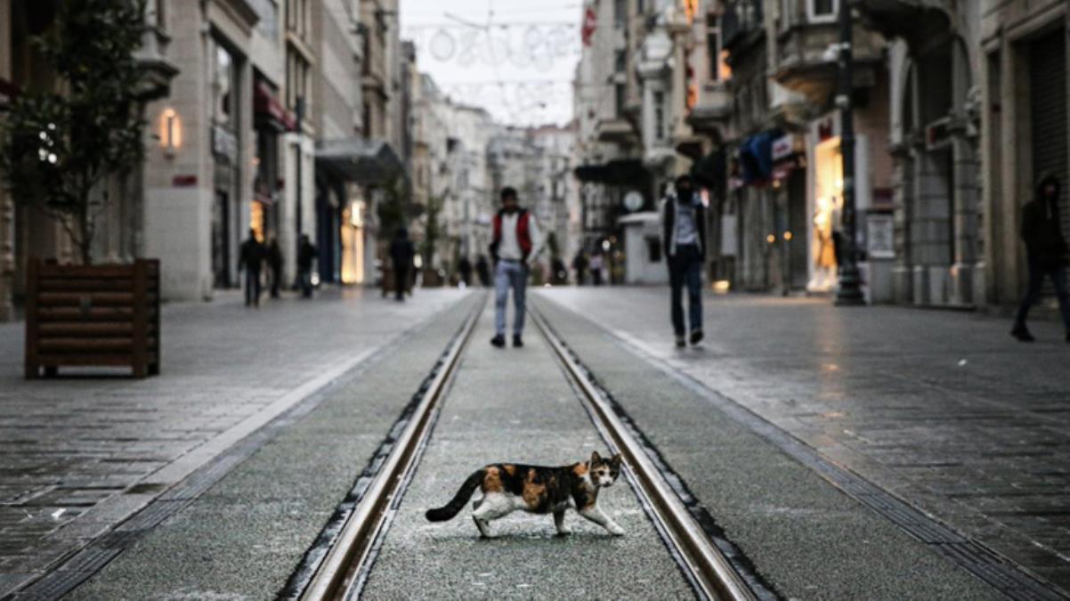 Risk haritasında kırmızı illerin sayısının 39'a çıkması uzmanları tedirgin etti: Türkiye tamamen kapanabilir