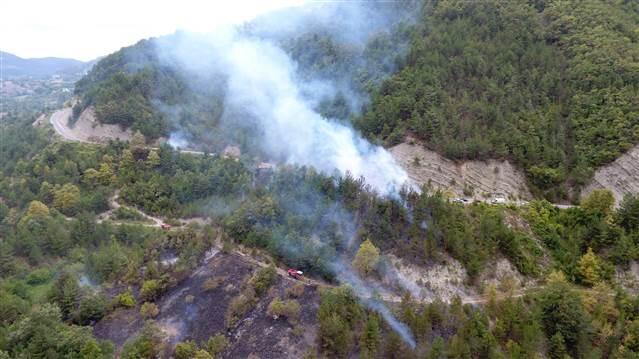 Sorumsuzluğun bu kadarına da pes! Kuru otları temizlemek isterken 20 hektar ormanı yaktı!