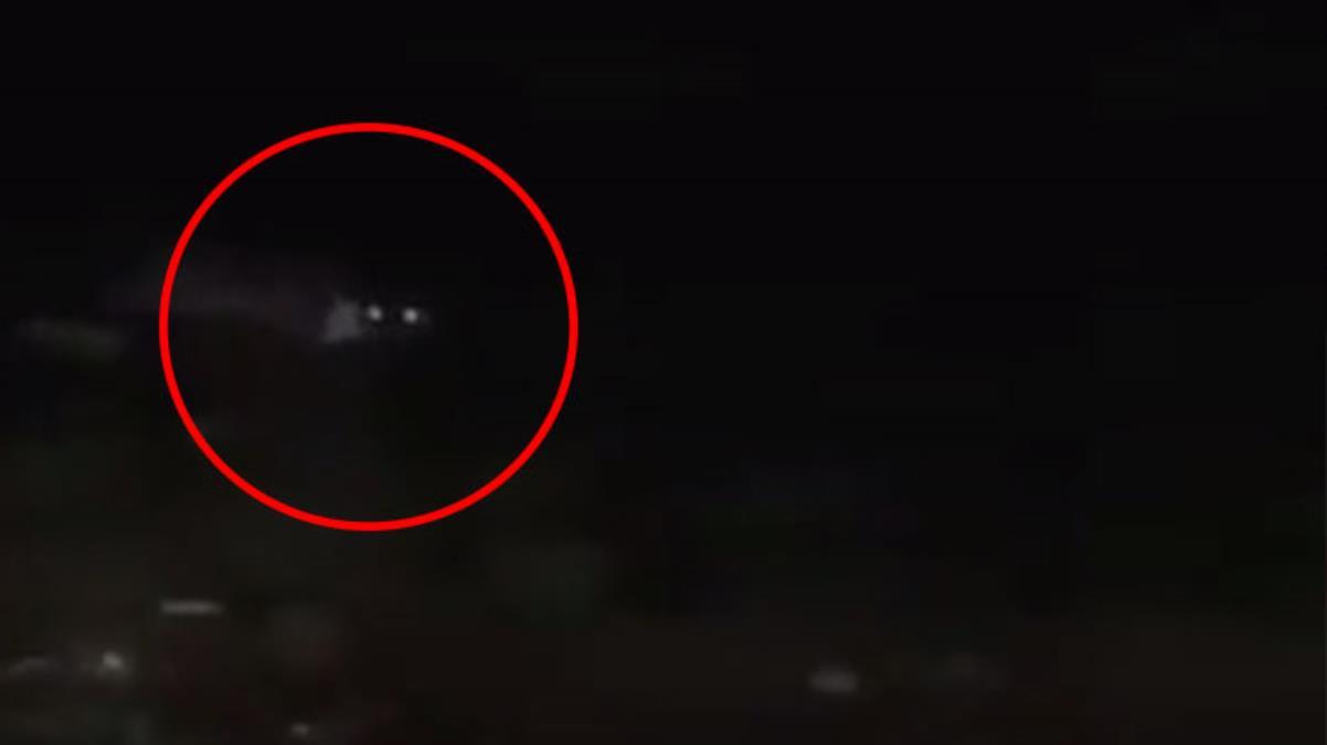 Vatandaşlar gece yarısı deniz kıyısında görünce tedirgin oldu! Yaklaştıklarında su samuru olduğunu anladılar